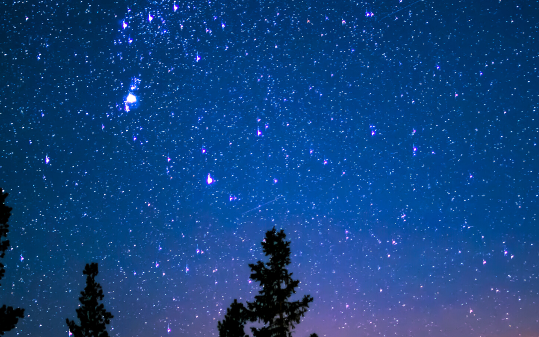 Remembering the stars which are shining bright in the skies